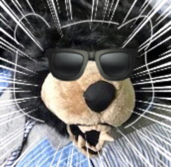 Boris the bear in emoji sunglasses.