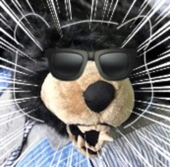 Boris the bear in emoji sunglasses.