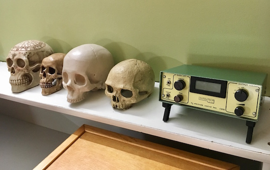 In-game: 4 human skulls beside a metal device.
