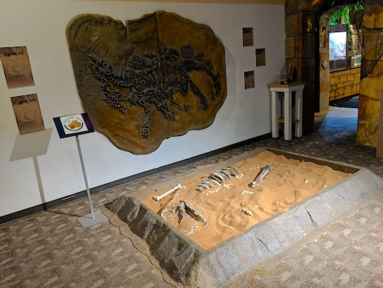 A dinosaur fossil on the wall, and a sandpit with dinosaur bones at the Museum of Intrigue.