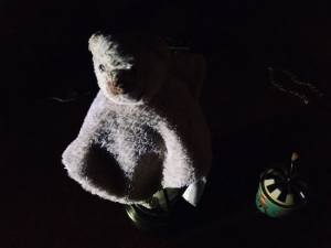 In-game: A skinned stuffed animal in a dark room.