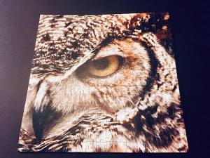 The assembled puzzle with a fierce looking owl face.