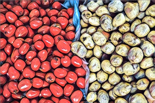 Stylized image of tomatoes and potatoes split up into separate piles.