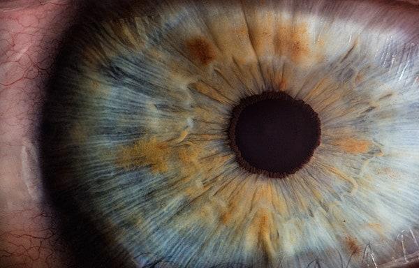 Closeup image of a blue eye.