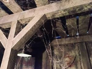 In-game: The cobweb covered ceiling of the Cellar Escape.