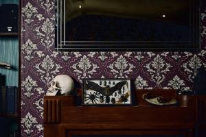 A skull and preserved bugs in 221B Baker Street.