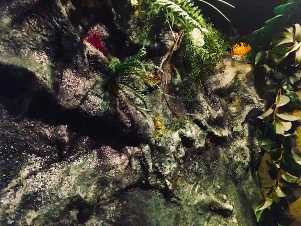 In-game: An earthy wall of stone and plant life.