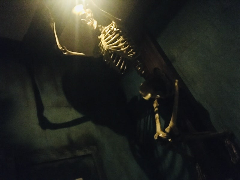 In-game: A skeleton mounted from the ceiling, a light above its head.