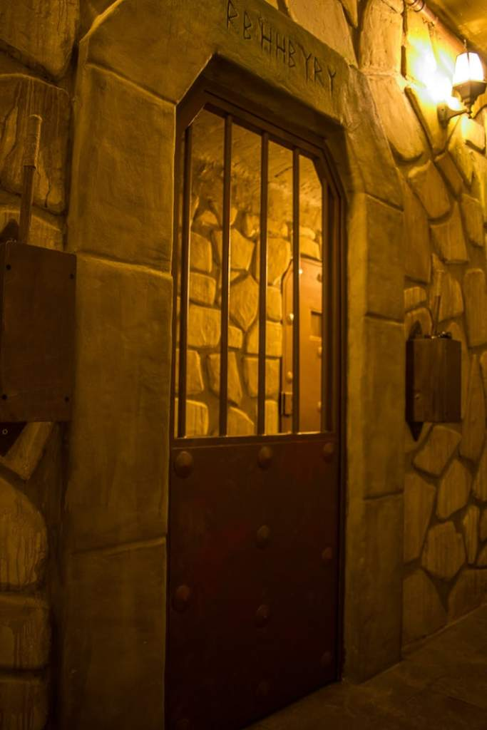 In-game: A metal door within a dungeon with runes inscribed in the stone above.