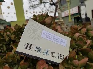 """A paper clue sitting in a bush. The text reads """"Find the nearby I Ching wheel and use it to divine the fortune of the Black Tortoise."""""""
