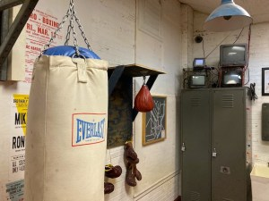 Assorted punching bags and gloves in a boxing club.
