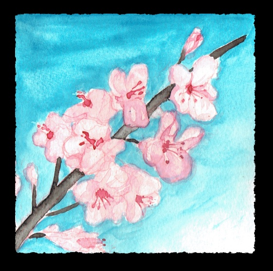Watercolor of a branch of cherry blossoms.