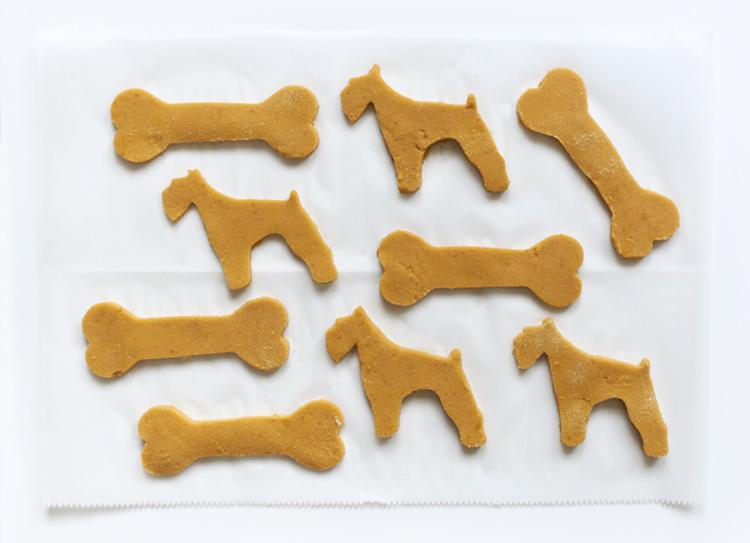 grain-free dog treats