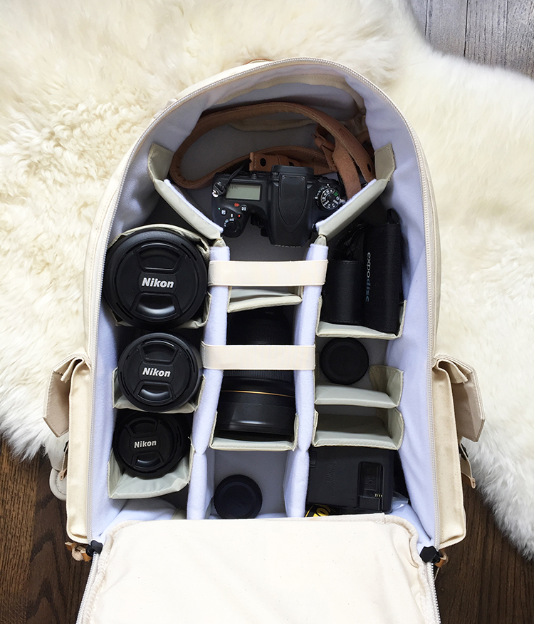 a-peek-into-my-camera-bag