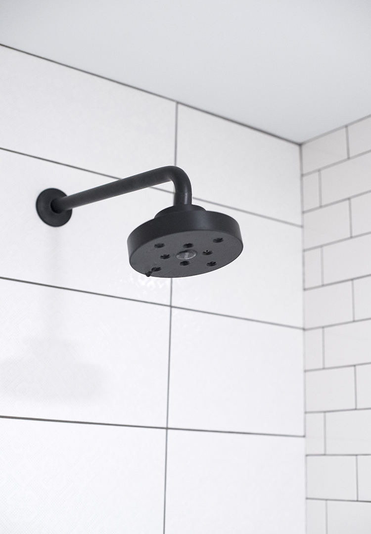 Brizo Litze Shower Head