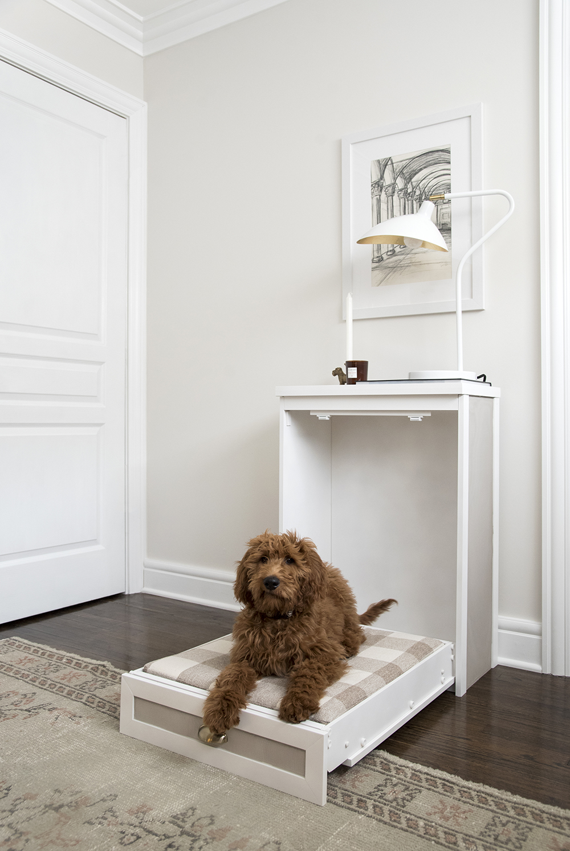 Murphy Dog Bed DIY - roomfortuesday.com