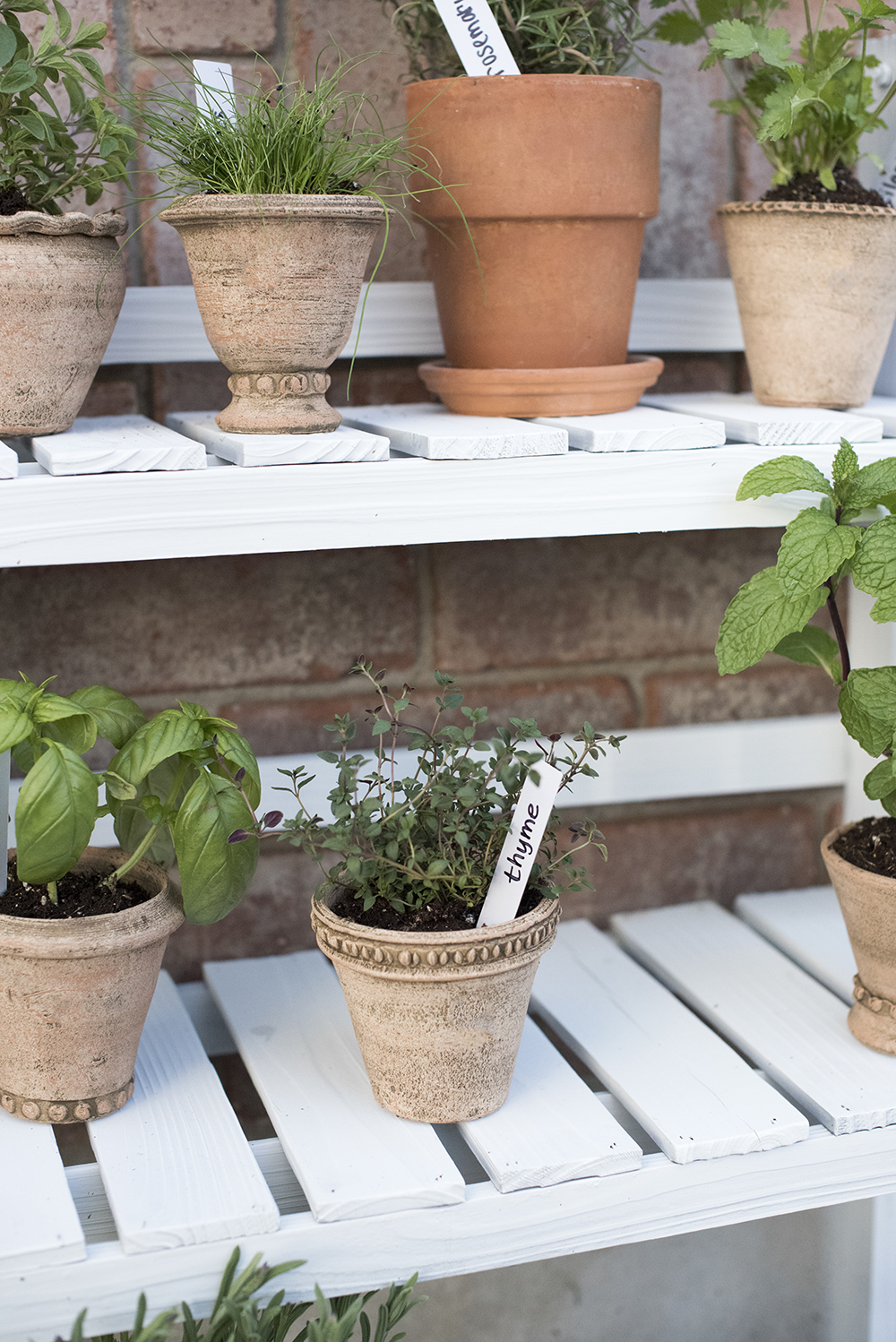 DIY Herb Garden - roomfortuesday.com
