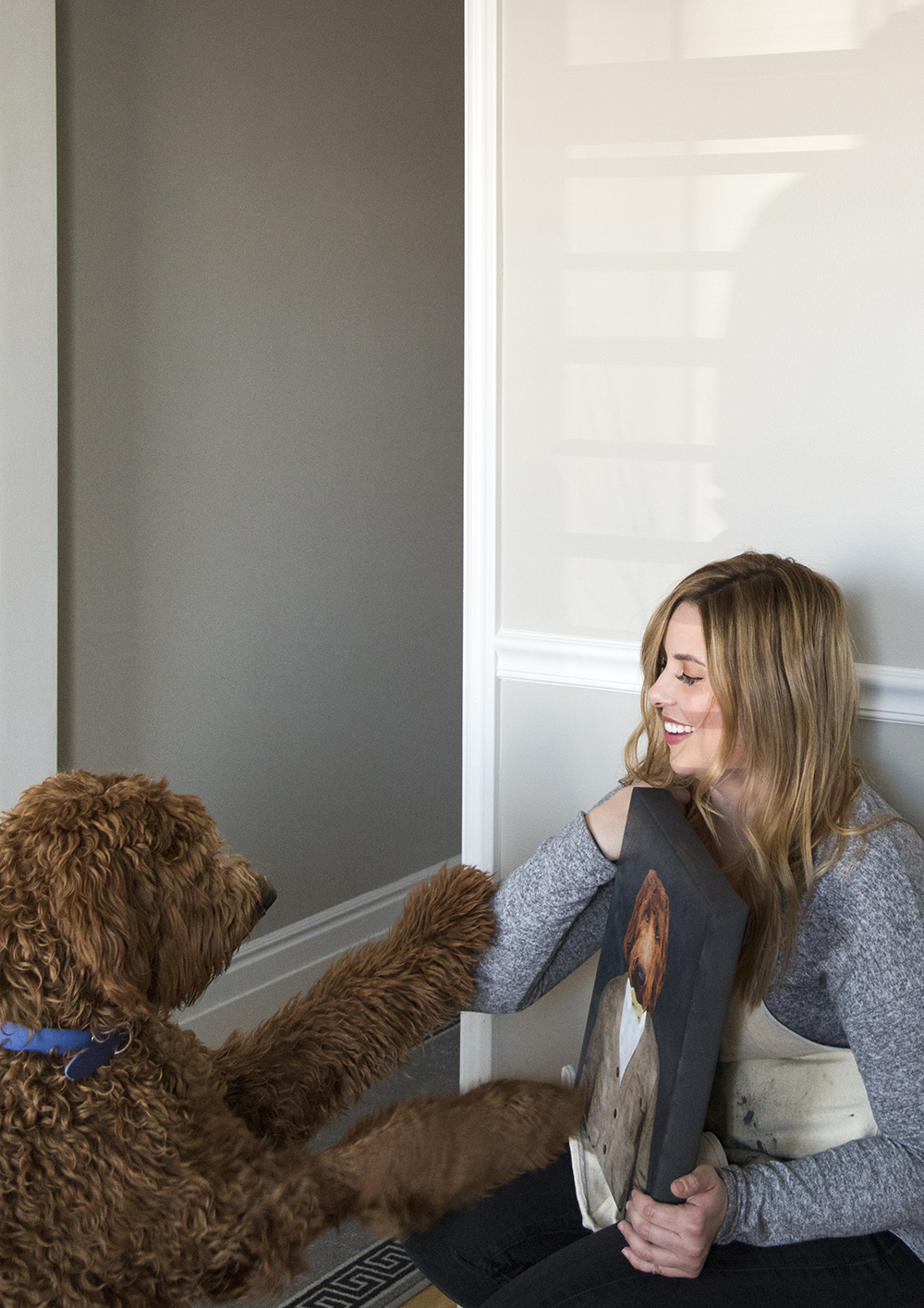 10 Smart & Creative Ideas for Homes with Dogs - roomfortuesday.com