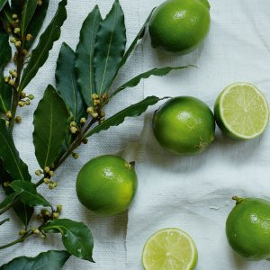 Lime & Bay Fragrance Oil - Room Fragrances