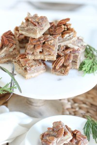 Pecan Pie Bars | Holiday Recipe