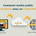 Cherchez-vous comment rendre public (sur Internet) votre localhost où vous avez un projet d'un site web ou un autre projet, auquel vous souhaitez obtenir un URL public sans l'héberger sur un serveur ?
