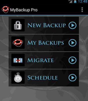 Best backup option without raid
