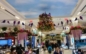 Macy's Flower Show 2021, Birds in the Sky