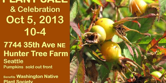 Fall Native Plant Sale