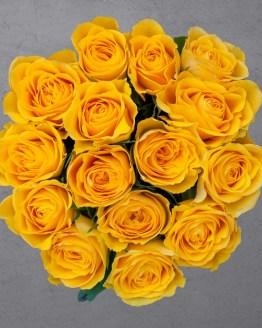 15 kollast roosi