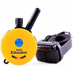 Remote Caller Training