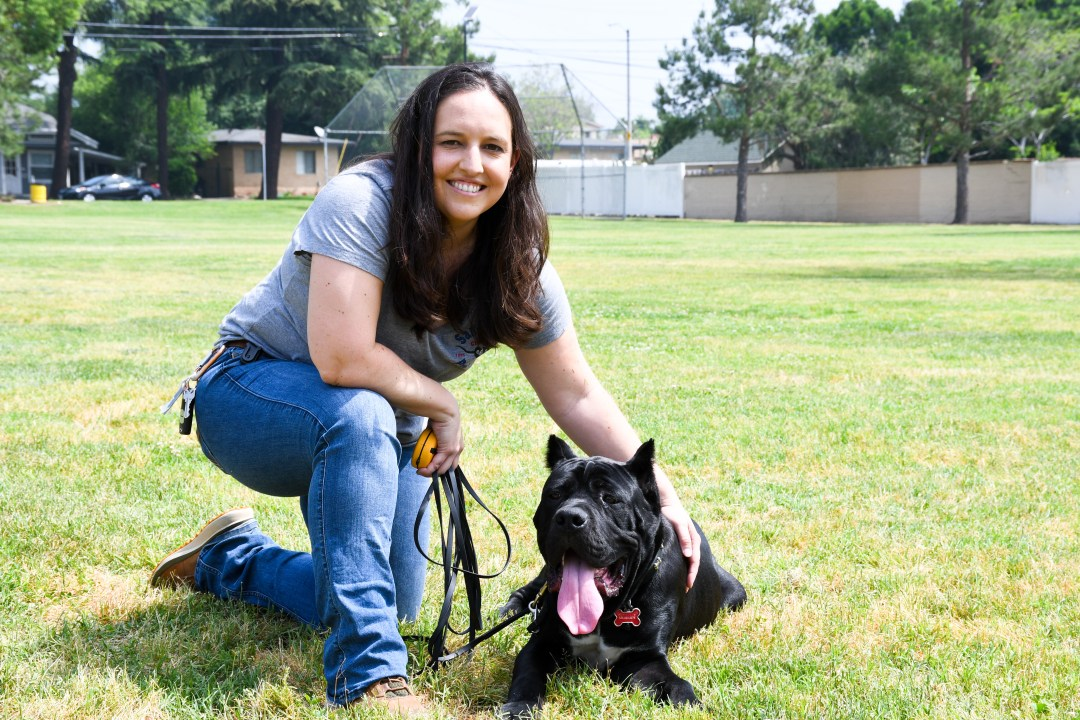 San Gabriel Valley dog training