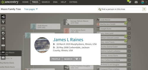 New Ancestry Website