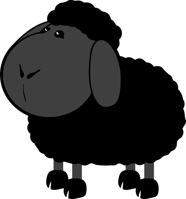 Black Sheep Kitchen Menu