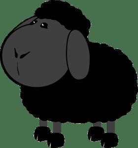 black sheep ancestor