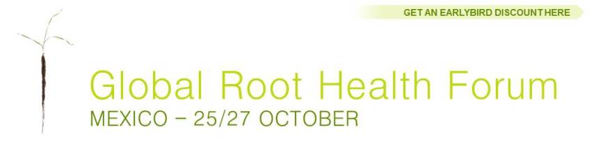 Global Root Health Forum in Mexico