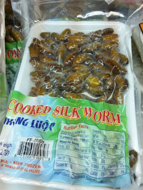 silk-worms-good-eats