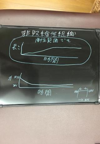 仙台で足の痛みに強い整体