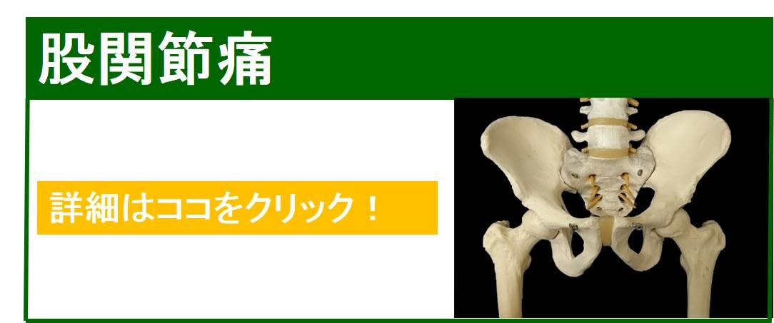 股関節痛 仙台の整体