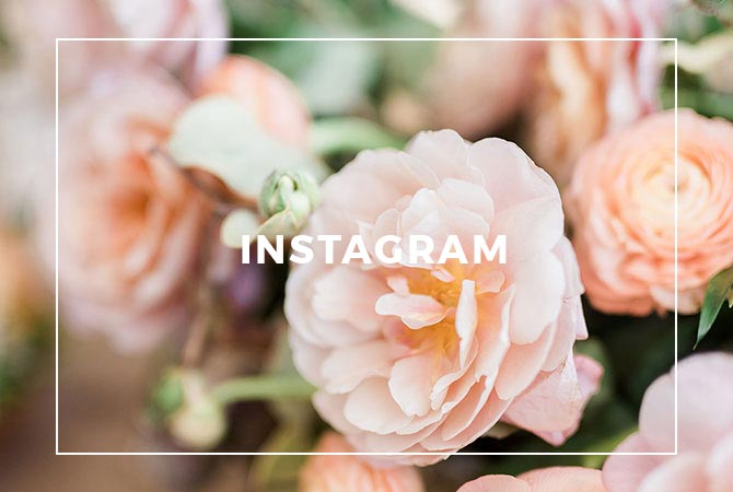 Follow Roots Floral Design on Instagram
