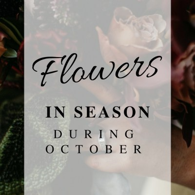 What flowers are in season during October?