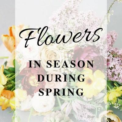 Flowers in Season During Spring