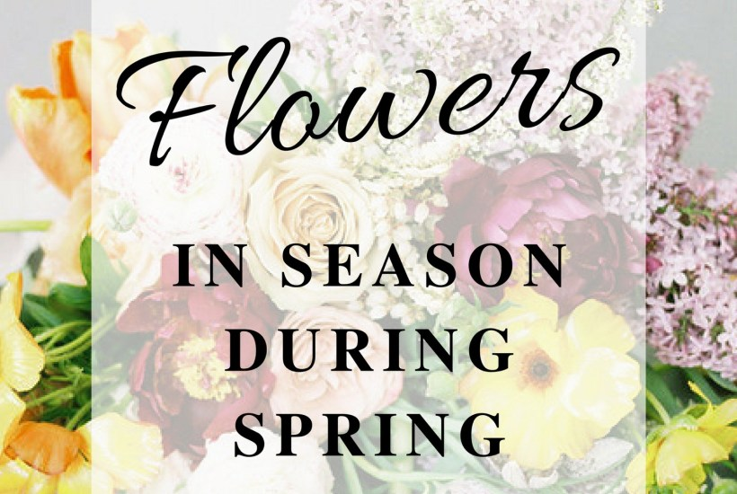 Flowers in Season During Spring | Flower Ideas for a Spring Wedding