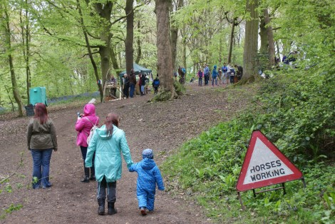 Woolley Woods Bluebell Festival