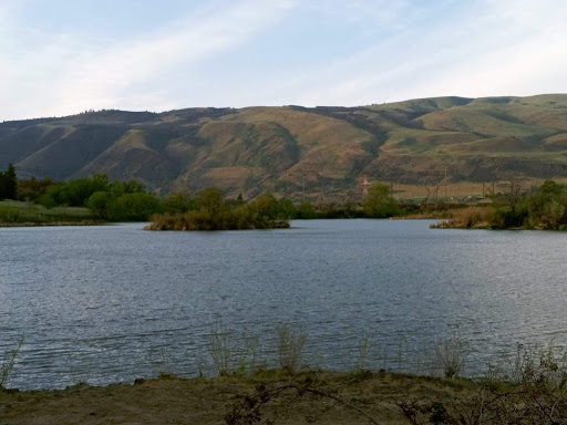 Earth Day 2021: Taylor Lake Cleanup