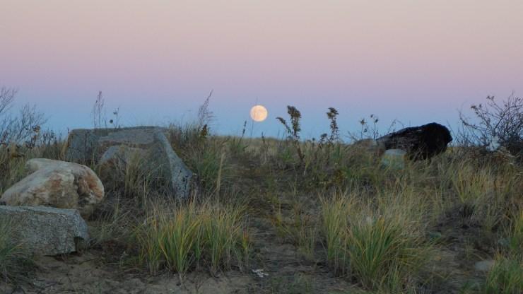 moon-rising-031
