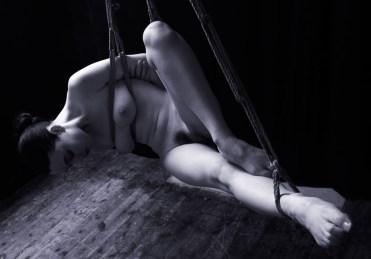 Gestalta in shirbari bondage suspension