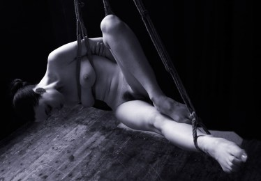 Gestalta in shirbari bondage suspension