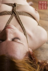 Long gone Shibari