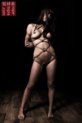 Hojo Hishi bondage