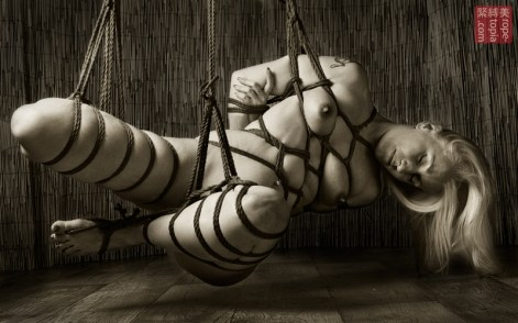 ShibarD Shibari bondage shoot hishi gote suspension